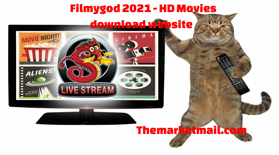 Filmygod website for watching movies online for free